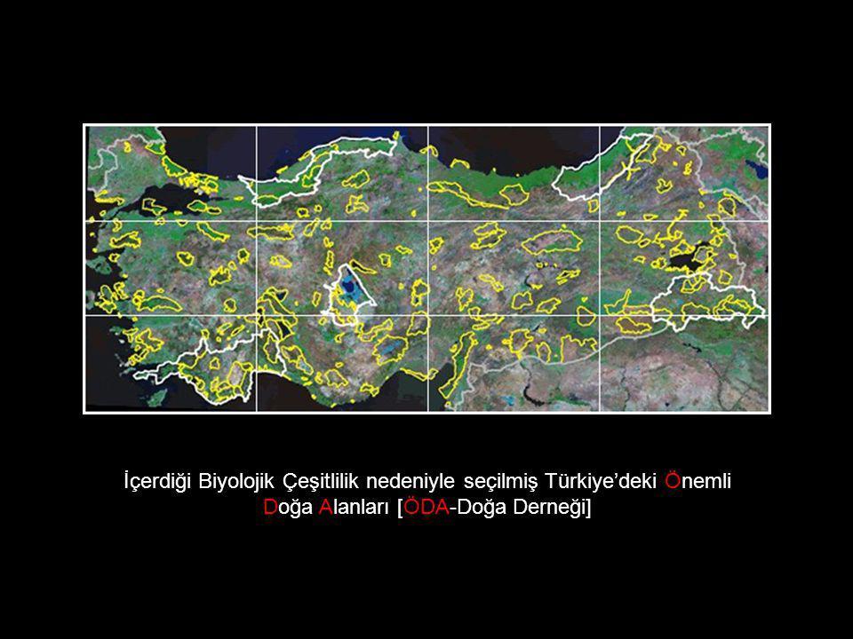 İçerdiği Biyolojik Çeşitlilik nedeniyle seçilmiş Türkiye'deki Önemli Doğa Alanları [ÖDA-Doğa Derneği]